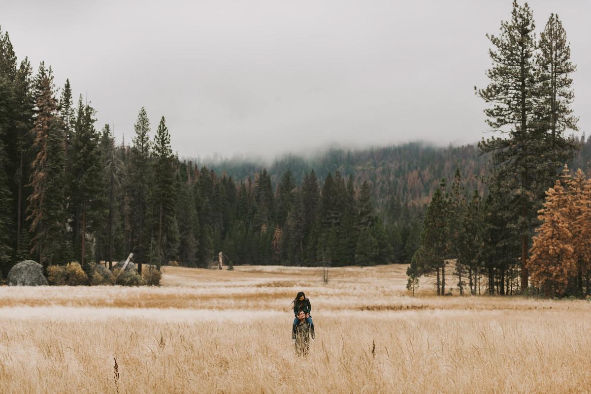 redwoods, adventure, hiking, engagement